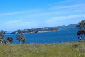 Lot 1 Bruny Island Main Road, Bruny Island, Tas 7150
