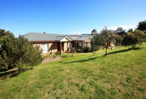 213 Back Forest Road, Back Forest, NSW 2535