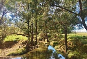 1 Hanleys Creek Road, Dungog, NSW 2420