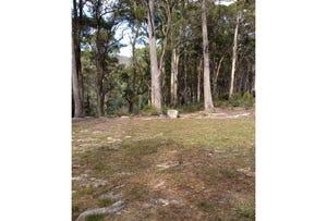 Lot 3, Elephant Pass Road, St Marys, Tas 7215