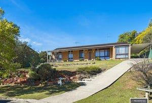 20 Lavinia Place, Ambarvale, NSW 2560
