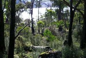 Lot 643 Drysdale Road, Miena, Tas 7030