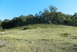 Lot 5, Lower Swamp Road, Lachlan, Tas 7140