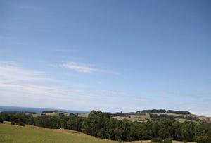 00 Mount Hicks Road, Wynyard, Tas 7325