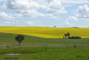 Benmore Road, Harden, NSW 2587