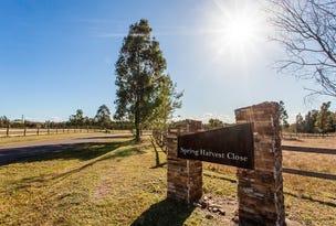 22 Spring Harvest Close, Pokolbin, NSW 2320