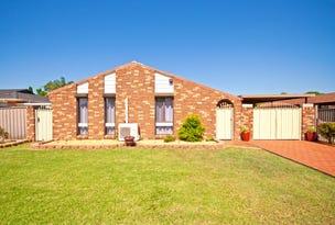 20 Palena Crescent, St Clair, NSW 2759