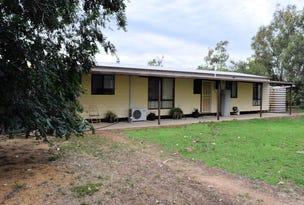 160 LEETHAM ROAD, Deniliquin, NSW 2710