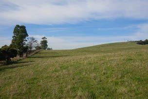 Lot 1 Cahills Outlet Road, Kardella South, Vic 3950
