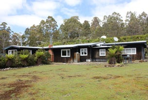 287 Bradys Lake Road, Bradys Lake, Tas 7140