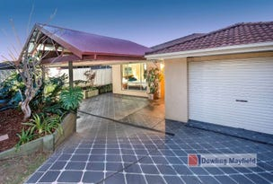 3 Shelley Close, Mayfield, NSW 2304