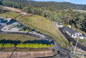 1/162 Grandview Drive, South Spreyton, Tas 7310