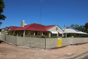 45 Peake Terrace, Waikerie, SA 5330