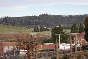 Lot 1  Emu Bay Road, Deloraine, Tas 7304