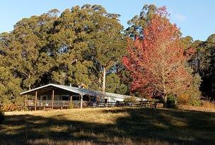 x Brackendale Road, Nowendoc, NSW 2354