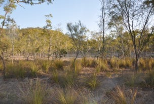 Lot 231 Murphy Rd, Captain Creek, Qld 4677