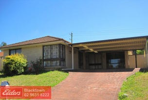16 Sherborne Place, Glendenning, NSW 2761