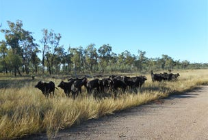 Lot 102 'Lillyvale' Capricorn Highway, Dingo, Qld 4702