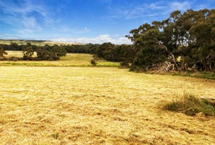 Lot 201 Gould Road, Currency Creek, SA 5214