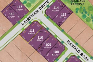 Lot 111 / 42 Rees James Road, Raymond Terrace, NSW 2324