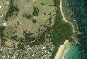 Lot 1002 Scarborough Circuit, Red Head, NSW 2430
