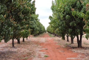 . Red Centre Mango Farm, Ti Tree, NT 0872