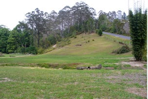 120 Mount Street Fernmount, Bellingen, NSW 2454
