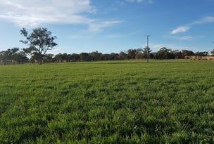 458 Sir Ivan Dougherty Drive, Dunedoo, NSW 2844