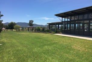 58 Peak Drive, Hillvue, NSW 2340