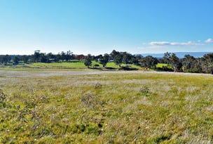 Lots 183 & 184 - McLeod Street, Gerogery, NSW 2642