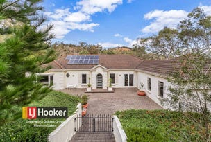 1 Camelia Street, Tea Tree Gully, SA 5091