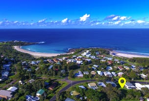 118 Malibu Dr, Bawley Point, NSW 2539