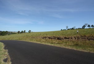 L1339  Lot 100 Cox Road via Anderson Road, Peeramon, Qld 4885