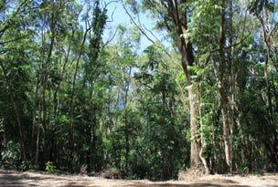Lot 37 Ronald Road, Forest Creek, Daintree, Qld 4873