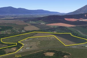 Lot 55 Mount Peter, Mount Peter, Qld 4869