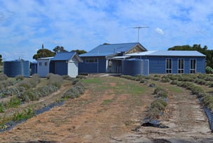 Lot 20, 203 EMU BAY ROAD, Wisanger, SA 5223