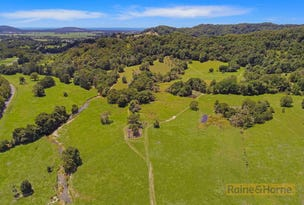 Lot 4 & B 803 Cudgera Creek Road, Cudgera Creek, NSW 2484