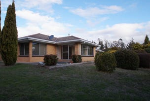 111 Cookes Road, Armidale, NSW 2350