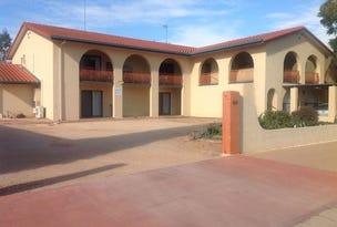 Unit 5/86 Nookamka Terrace, Barmera, SA 5345