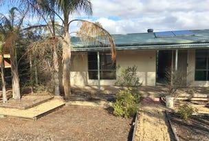 10 Dorothy Avenue, Paringa, SA 5340