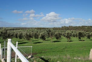 Lot 28 Brand Highway, Bookara, WA 6525