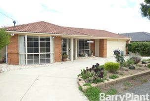 9 Joseph Banks Crescent, Cranbourne, Vic 3977