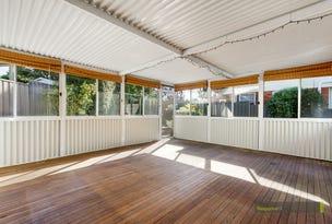 12 Blue Gum Road, Constitution Hill, NSW 2145