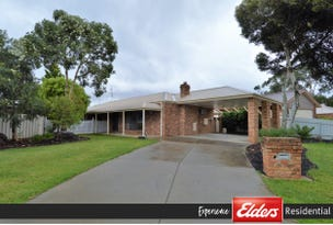 20 Lawson Drive, Moama, NSW 2731
