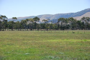 Lot 126, Dorans Road, Toora, Vic 3962
