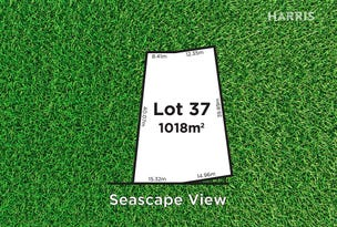 17 Seascape View, Sellicks Beach, SA 5174