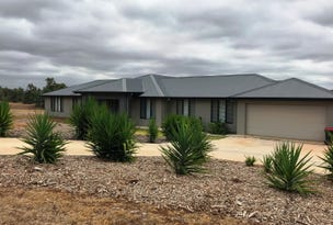 13 Octagonal Way, Muswellbrook, NSW 2333