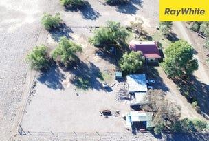 39 Rodgers Road, Bedgerabong, NSW 2871