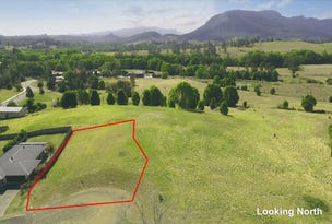 Lot 31 Bellevilla Court, Nimbin, NSW 2480