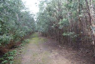 Lot 1 Maloney's Road, Deloraine, Tas 7304
